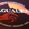 Bar Baguales em Puerto Natales, Chile