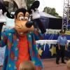 Minha primeira viagem à Disney – atrações nos parques temáticos
