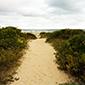 Ilha do Cardoso - www.viajandocomaman.com.br- Foto: Amandina Morbeck.