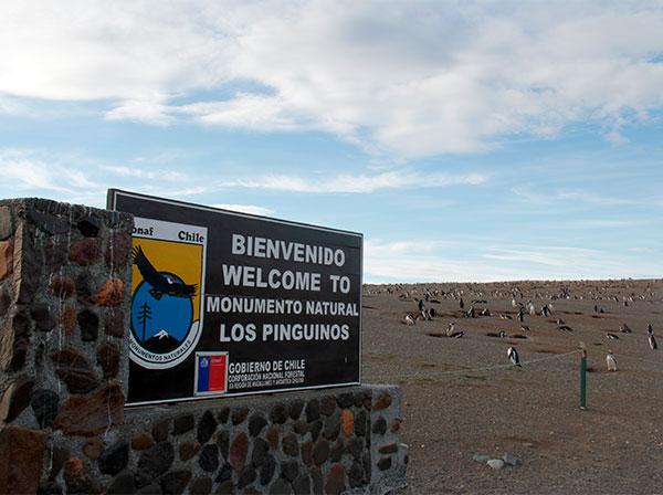 Placa de boas-vindas ao Monumento Natural Los Pinguinos, Isla Magdalena, Punta Arenas, Chile - Foto: Amandina Morbeck.