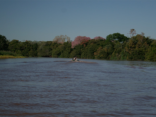 Rio Miranda - Pantanal de Mato Grosso do Sul - www.viajandocomaman.com.br - Foto: Amandina Morbeck.