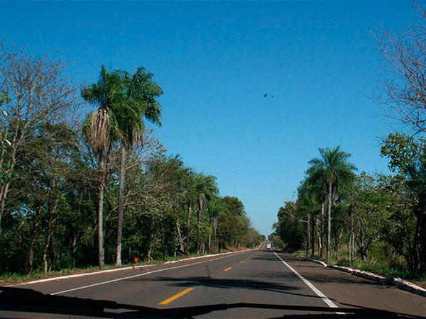 BR 262 que liga Campo Grande a Corumbá, atravessando o Pantanal de Mato Grosso do Sul na seca: plana e reta - www.viajandocomaman.com.br - Foto: Amandina Morbeck.