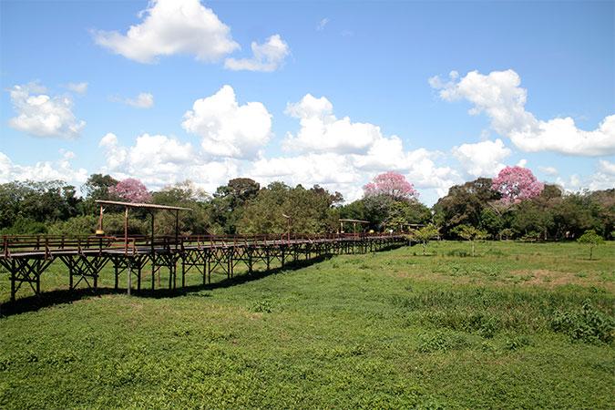 O hotel, às margens do Rio Miranda, foi construído para todas as estações - Pantanal do Mato Grosso do Sul na seca - www.viajandocomaman.com.br - Foto: Amandina Morbeck.