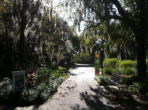 Trilhas como essa cruzam todo o Harry P. Leu Gardens em Orlando, Flórida - Foto: Amandina Morbeck.