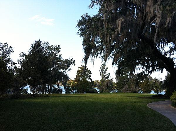 Carvalhos de até 200 anos fazem parte da paisagem - Harry P. Leu Gardens em Orlando, Flórida - Foto: Amandina Morbeck.