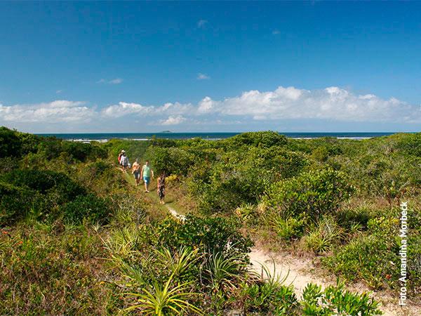 A ilha é muito bem preservada - www.viajandocomaman.com.br - Foto: Amandina Morbeck.