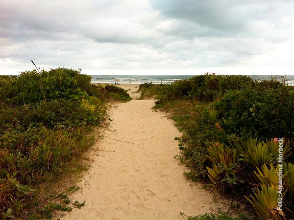 Trilha que liga a vila à praia oceânica e que é como um cartão-postal da ilha - www.viajandocomaman.com.br - Foto: Amandina Morbeck.