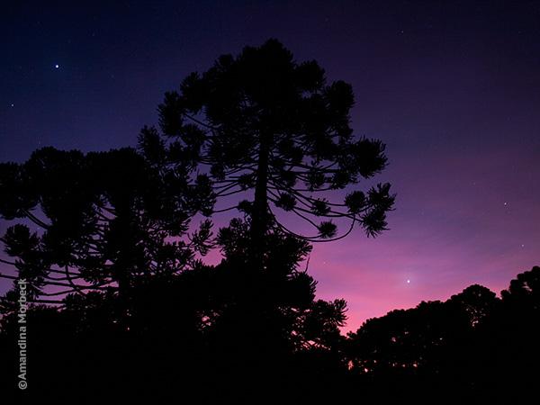 Céu noturno de Gonçalves, Minas Gerais - Foto: Amandina Morbeck.
