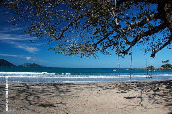 Praia de Castelhanos, Ilhabela, São Paulo - Foto: Amandina Morbeck.