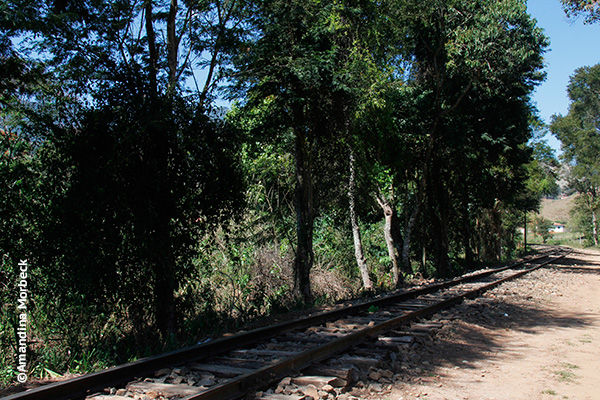 Parte dos 10 km preservados da antiga The Minas and Rio Railway - Foto: Amandina Morbeck.