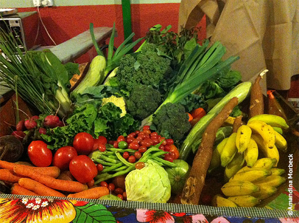 Cesta com produtos orgânicos produzidos no município de Gonçalves - Foto: Amandina Morbeck.