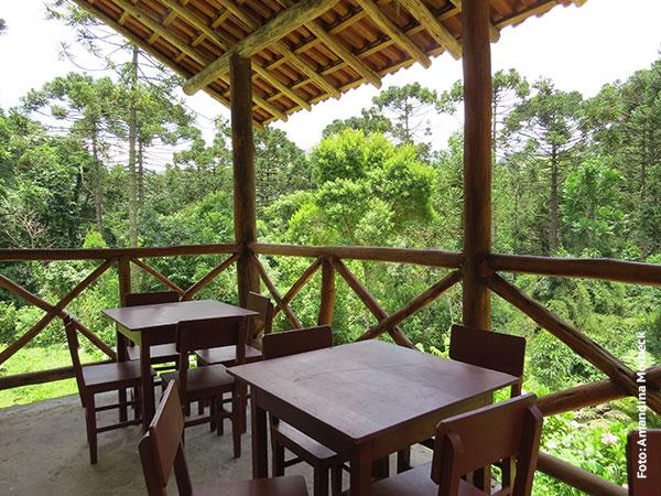 Mesas na varanda do bistrozinho na Floresta Barnabé, com verde em todas as direções - Foto: Amandina Morbeck.