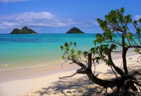 Lanikai Beach, Kailua, Oahu, Havaí - Foto: Reprodução/TripAdvisor.