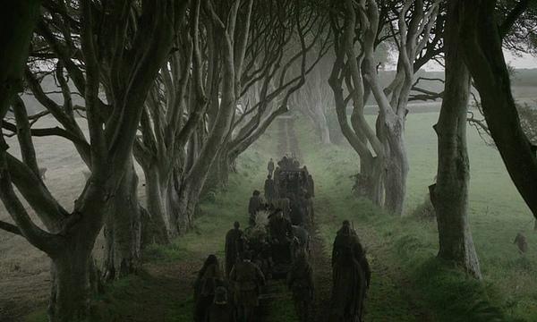 The Dark Hedges - Cenários de Game of Thrones - Foto: Reprodução.