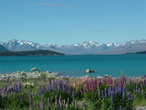 Lake Tekapo, Nova Zelândia - A 3 horas de carro de Christchurch, o lago com água azul turquesa e seus arredores fazem a alegria de quem gosta de fotografar. Às margens do lago fica a pequena Igreja do Bom Pastor; dali, também se avista o Monte Cook - Foto: Wikimedia/Achim.
